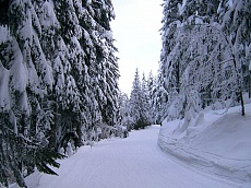 Ski way Dobrinishte